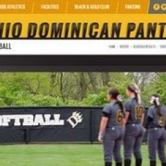 Panthers Softball